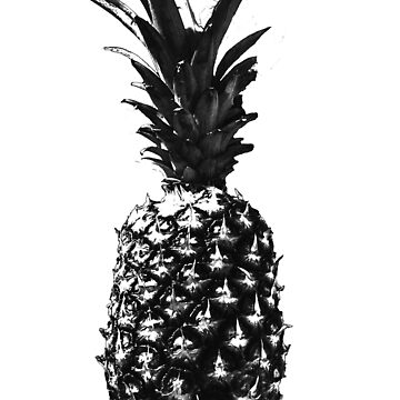 Pineapple Screen Print_BW by jocose-lines