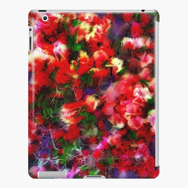 Esplendido iPad Snap Case