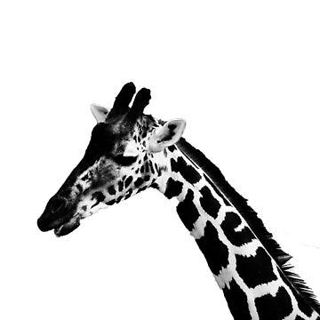 Giraffe_BW by jocose-lines