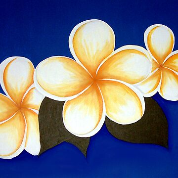 Frangipani on blue by maiboo