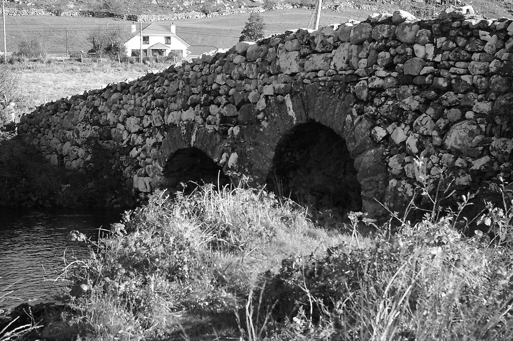 THE BRIDGE by serenity