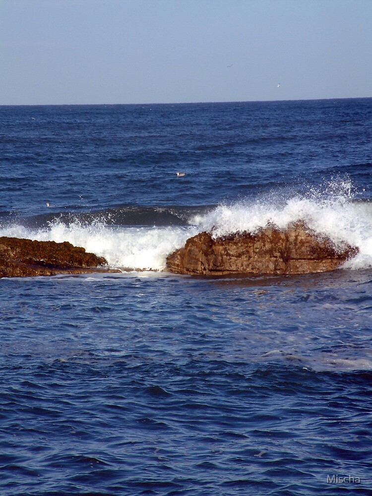 Crashing Over the Rocks by Mischa