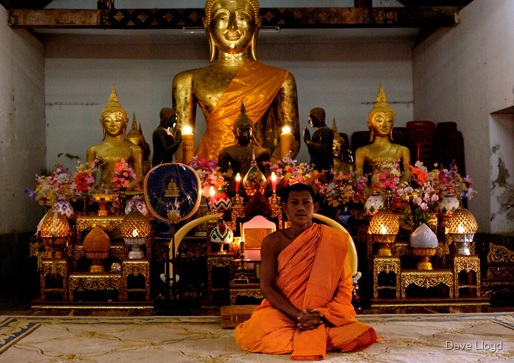 Monk In The Temple by Dave Lloyd