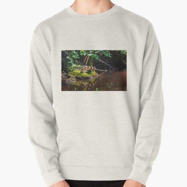 Mallard ducklings Pullover Sweatshirt