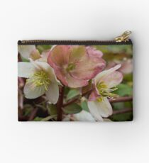 White and Pink Helleborus Flowers Studio Pouch