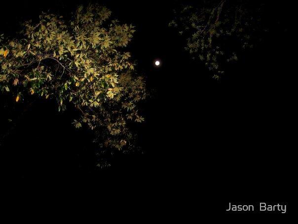 Moonshine by Jason  Barty