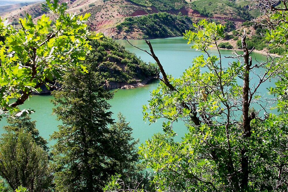 Causey Dam by Brandee