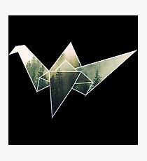 Geometric Forest Crane Photographic Print