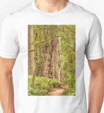 Timeless Trees Unisex T-Shirt