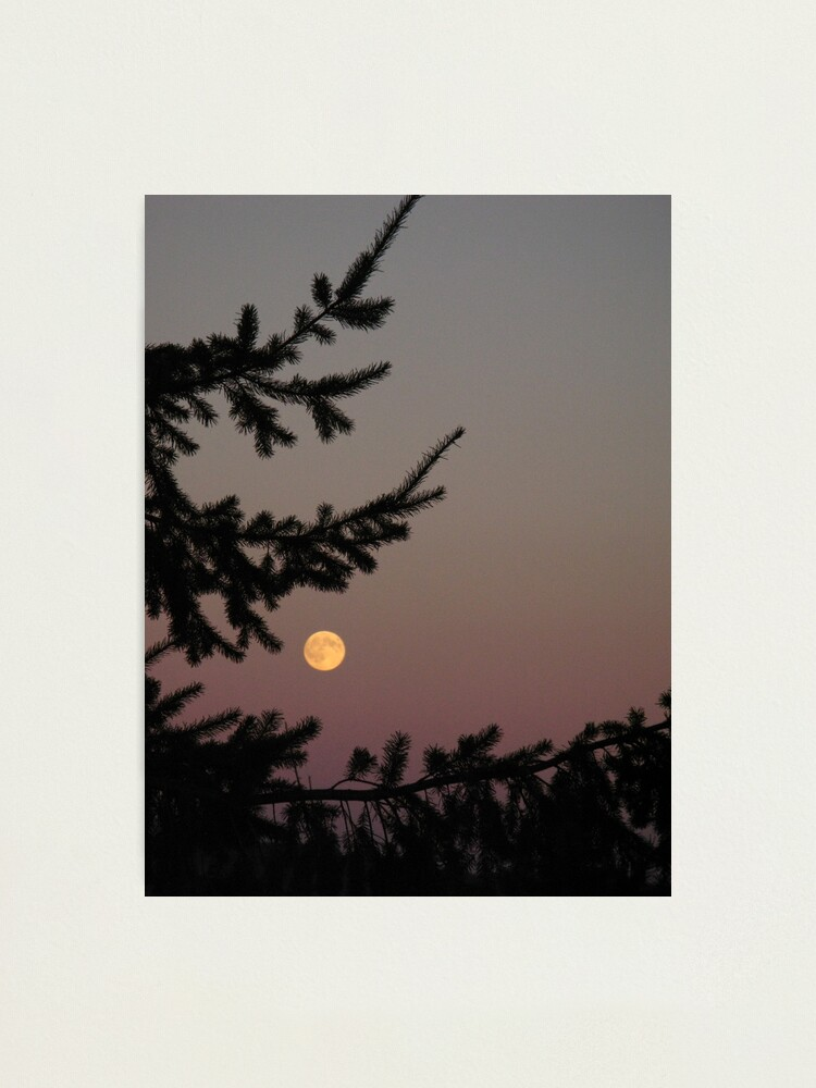 Alternate view of Puget Moon Photographic Print