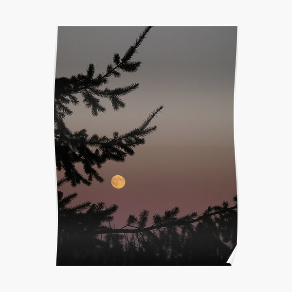 Puget Moon Poster