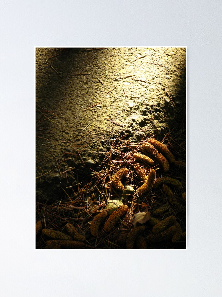 Alternate view of Textured Light Poster