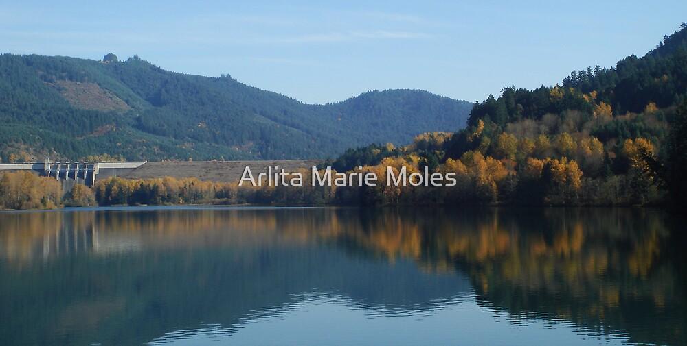 Autum at Lowell Oregon  by Arlita Marie Moles