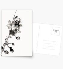 Untitled Postcards