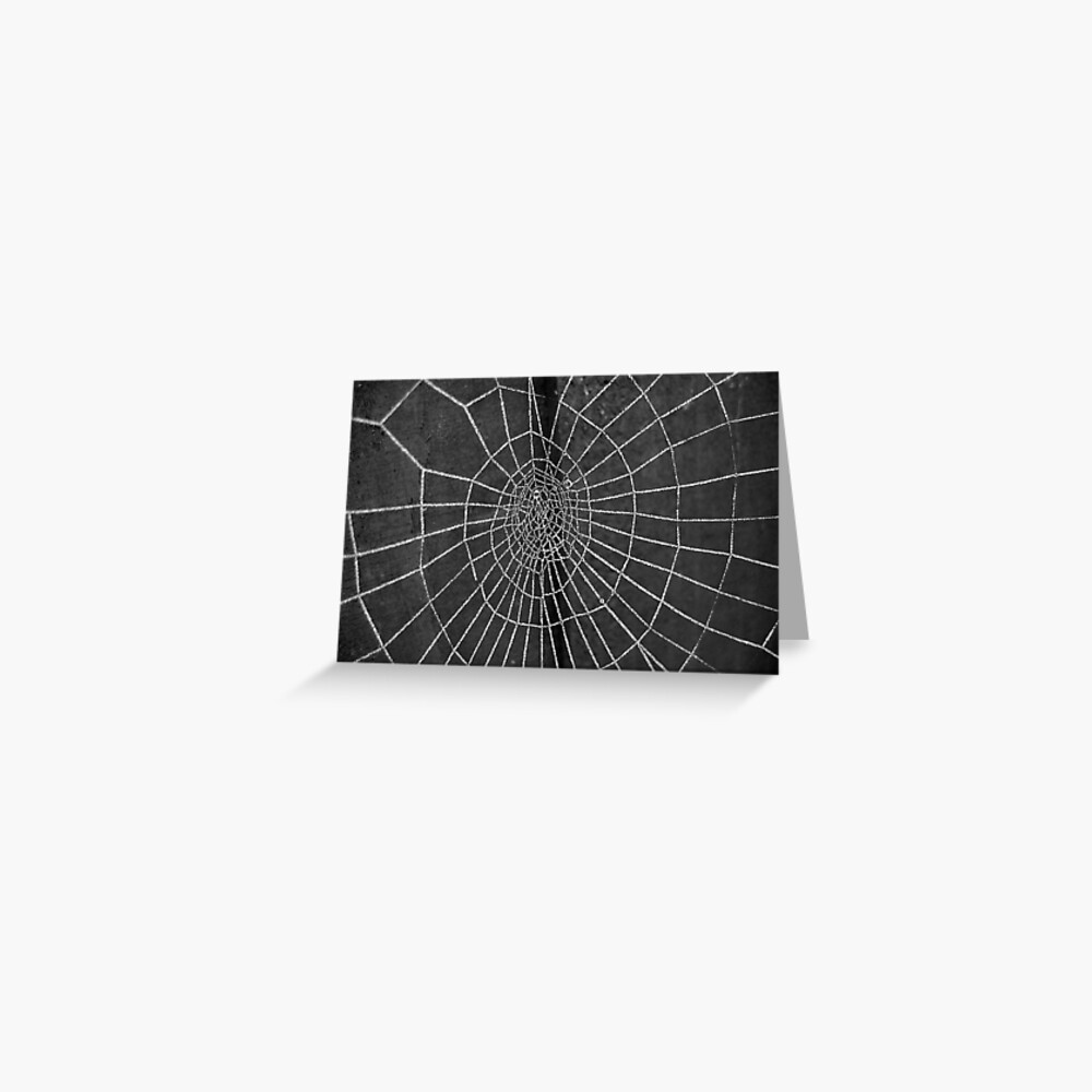 Frost Web Greeting Card