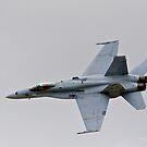 F-18 Hornet by Jerry  Mumma