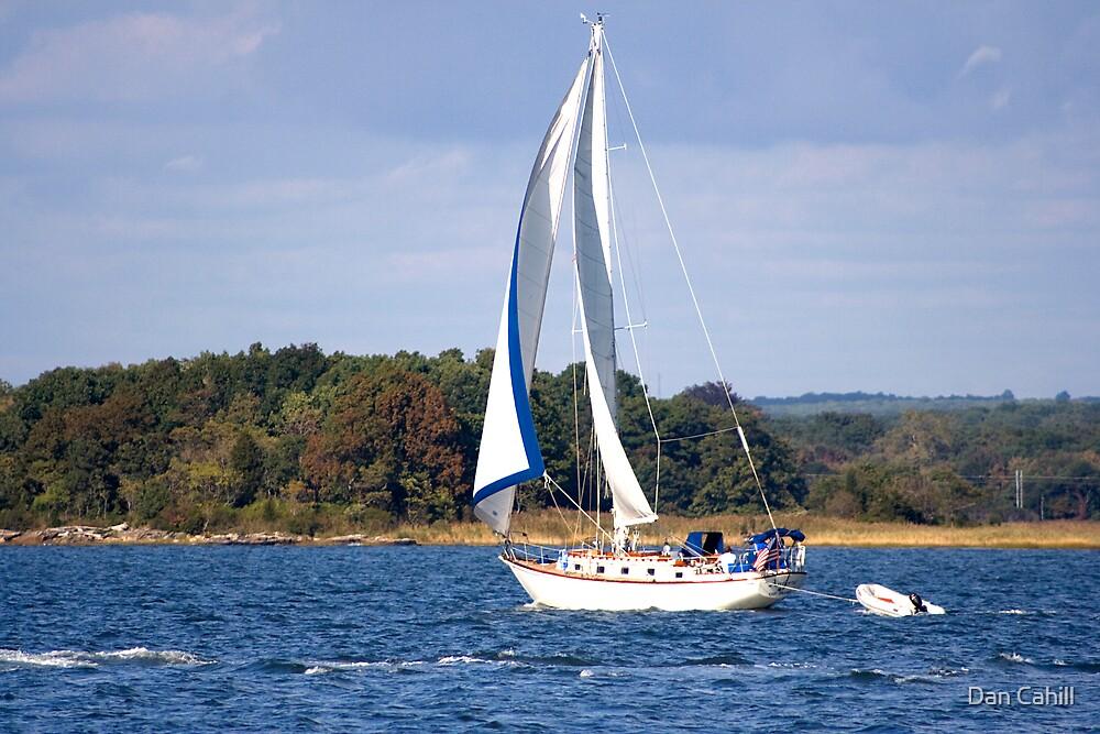 Sail Away by Dan Cahill