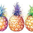 Three Pineapples by SamNagel