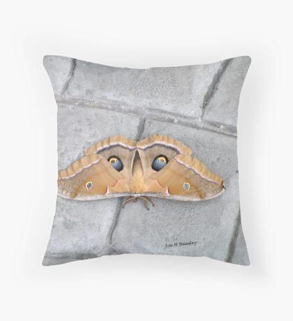Antheraea polyphemus Throw Pillow