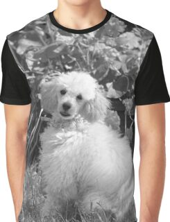 Poodle puppy Graphic T-Shirt