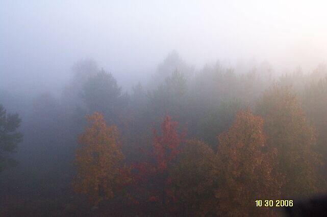 Foggy October Morn by olehippy13