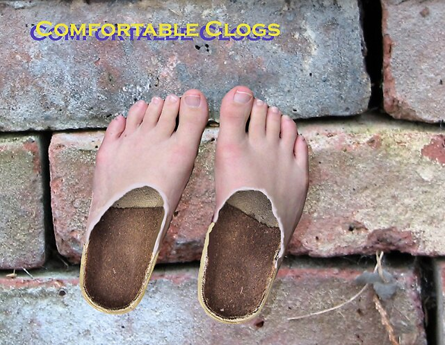 Comfortable Clogs....a persons' most comfortable shoes by olehippy13