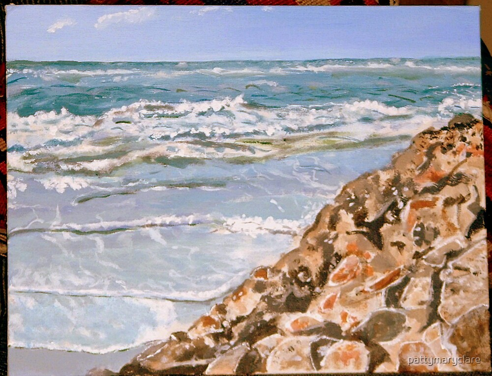 Rocky Boca Coastline by pattymaryclare