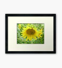 thinking of you flower Framed Print