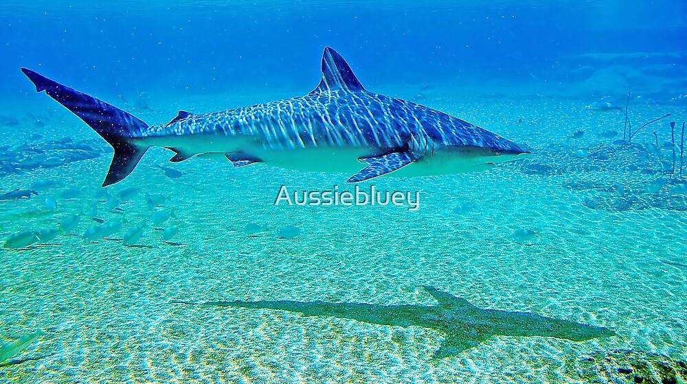 Shark, 2 by Aussiebluey