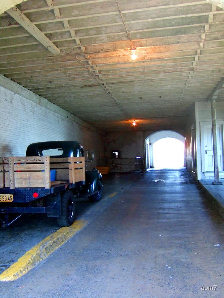 Alcatraz no.1 by aum7
