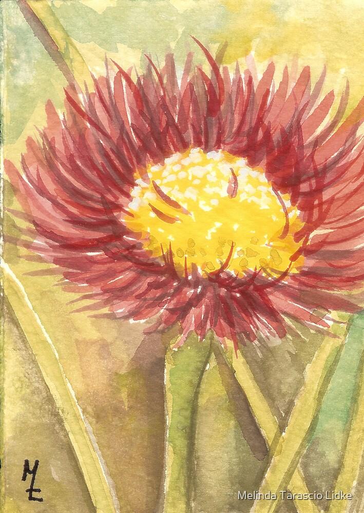 Petals Galore Watercolor 219 by Melinda Tarascio Lidke