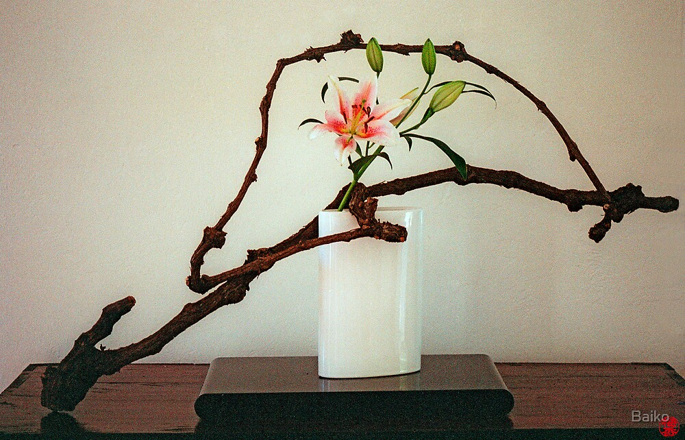 Ikebana-030 by Baiko
