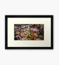 Ireland 'Rocks' - Giants Causeway, Northern Ireland #10 Framed Print