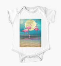 Pretty Flamingo's. Kids Clothes