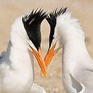 Tern Into Love by SuddenJim