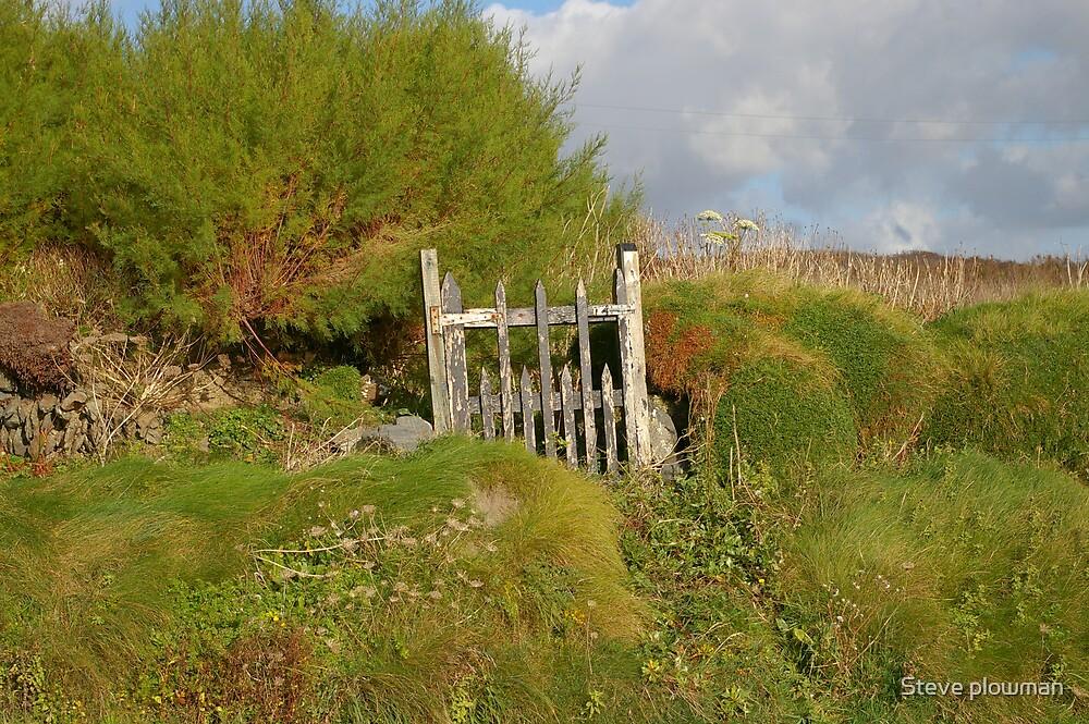 Gateway to nowhere. by Steve plowman