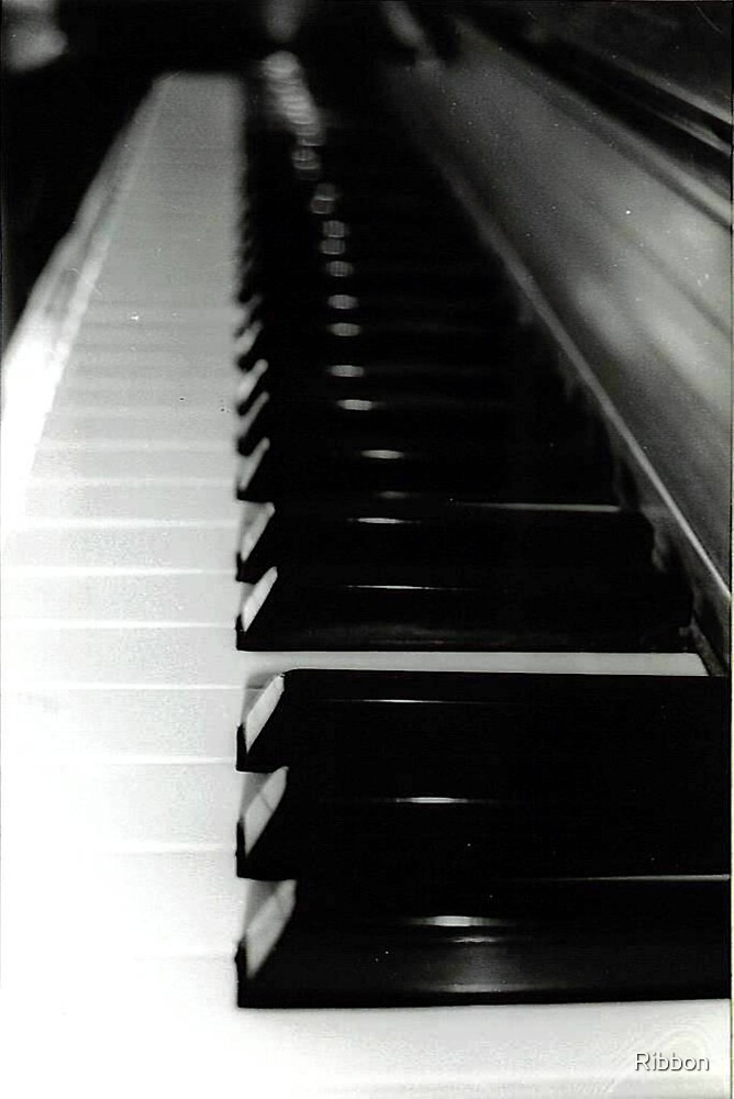 Piano Keys a Close Up Study in Black and White by Ribbon