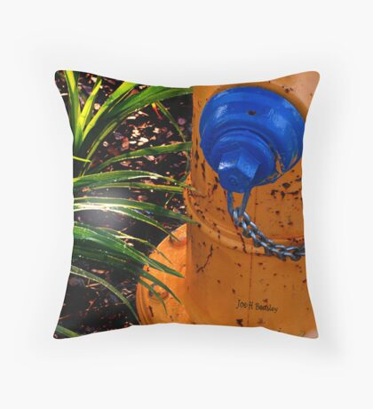 Water and Sunlight Throw Pillow