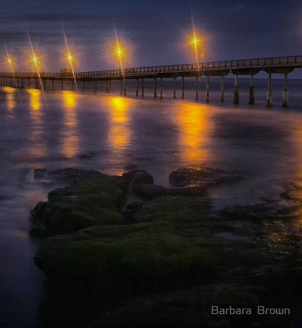 Sea Lights by Barbara  Brown