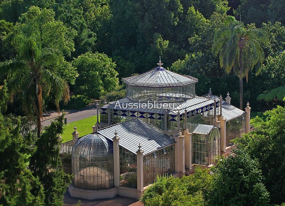 Glasshouse by Aussiebluey