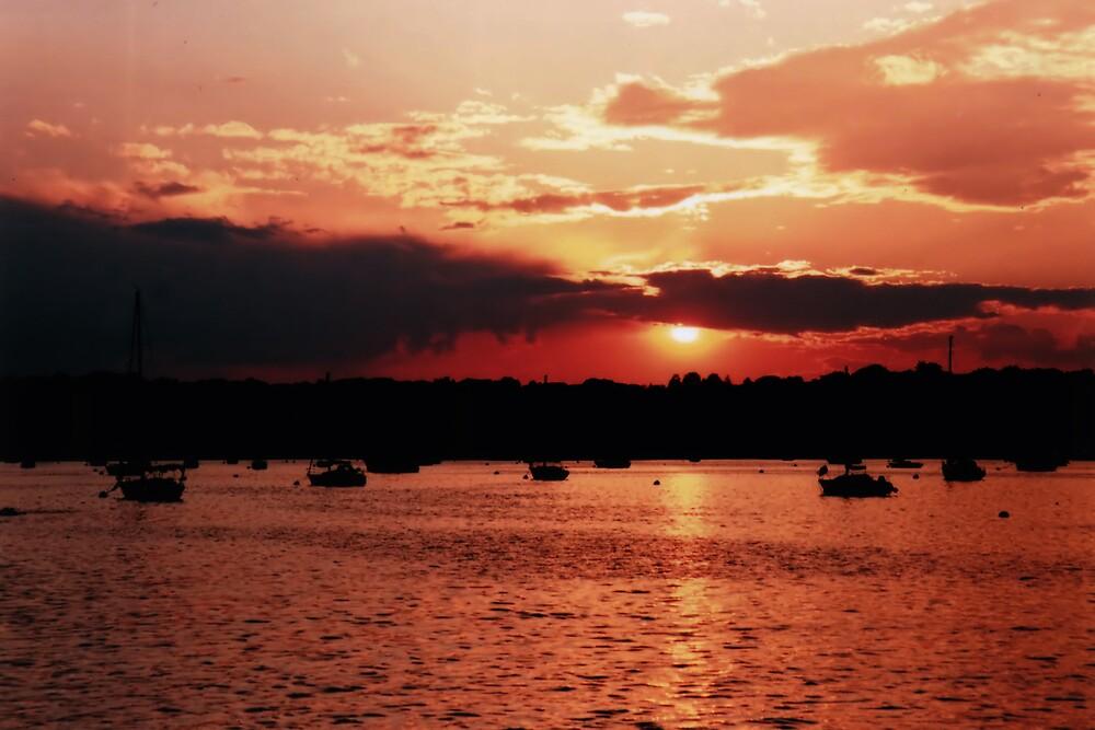 Sunset Harbor by Kimberly Sharpe