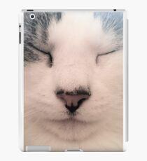 Meditating Cat iPad Case/Skin