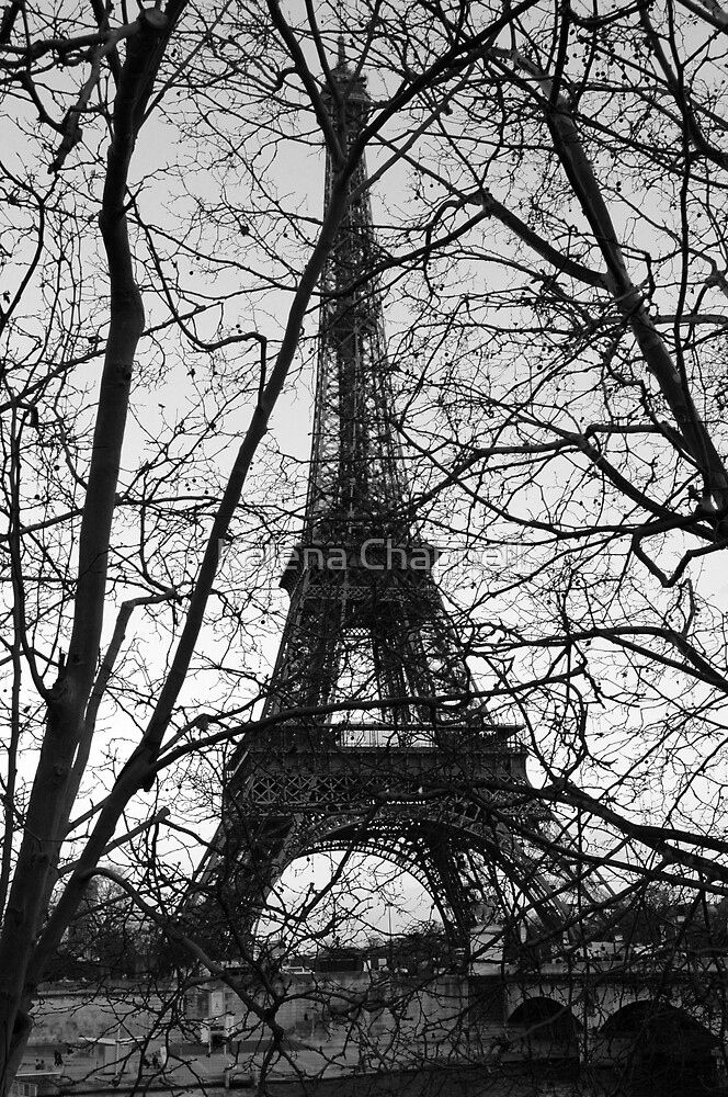 Eiffel Through Trees by Kalena Chappell