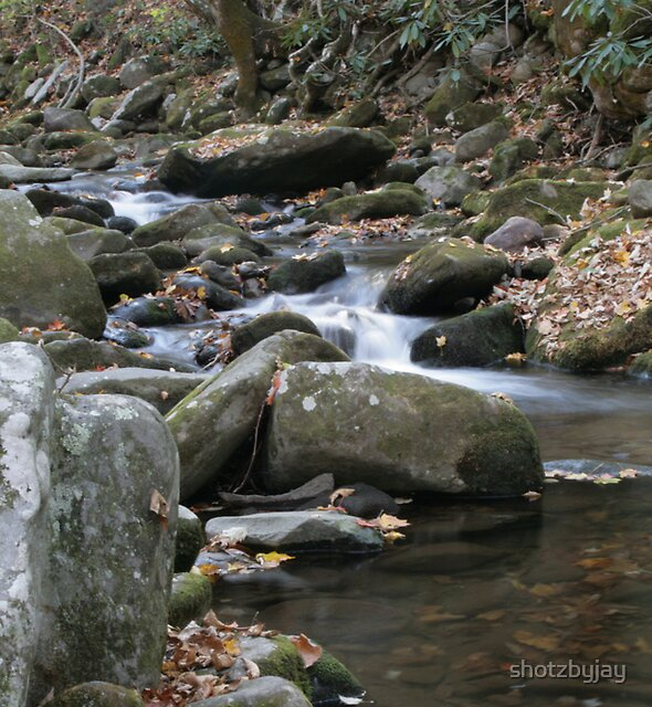 Smoky Mountain Stream II by shotzbyjay