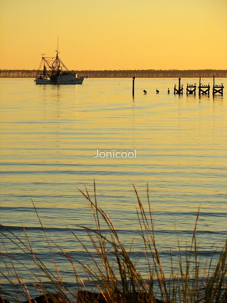 Golden Calm by Jonicool