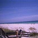 Beach View by StacyMc