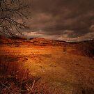 MY BEAUTIFUL SCOTLAND by leonie7