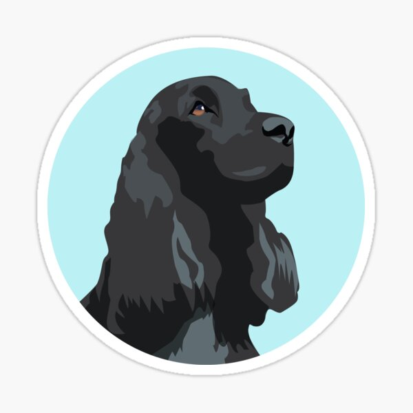 Black Cocker Spaniel Illustration @ Pets Illustrated Sticker