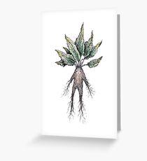Mandrake  Greeting Card
