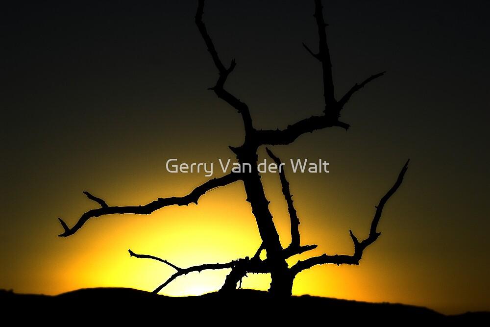 African Sunrise by Gerry Van der Walt